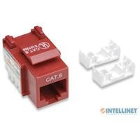 Jack Intellinet Cat 6 rojo